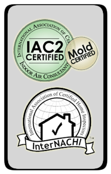 Services Remo Colantoni NACHI and IAC2 Certified